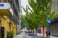 Ulica Traugutta (33)