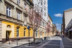 Ulica Traugutta (9)